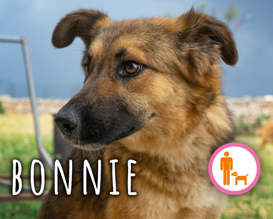 Bonnie_profilo