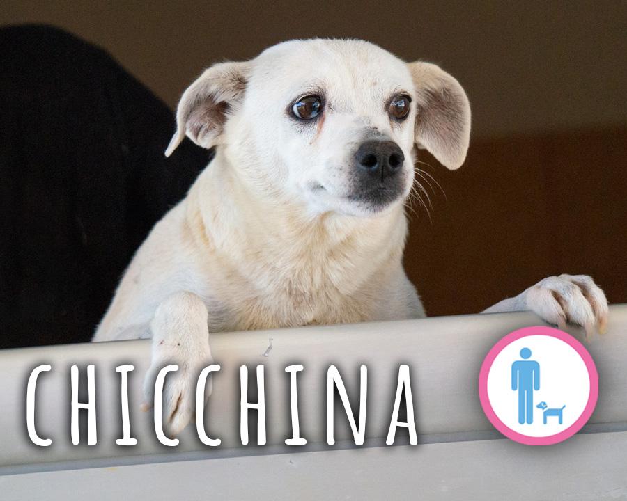 Chicchina_profilo