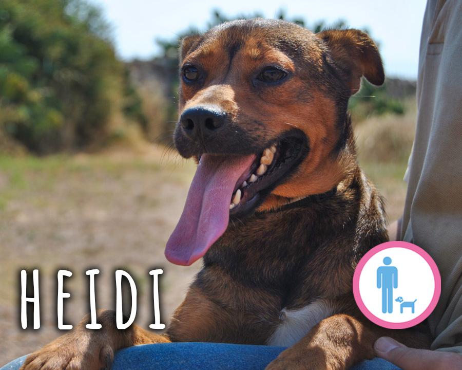 Heidi_profilo