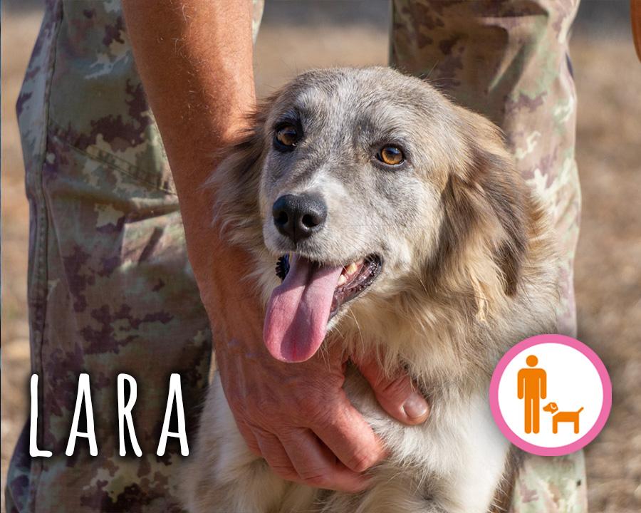 Lara_profilo