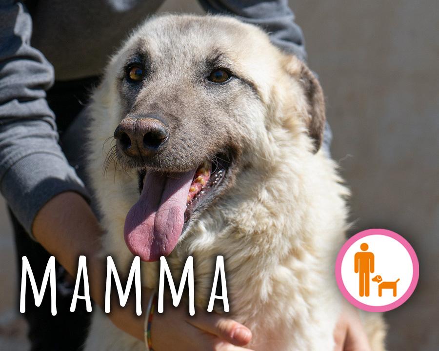 Mamma_profilo