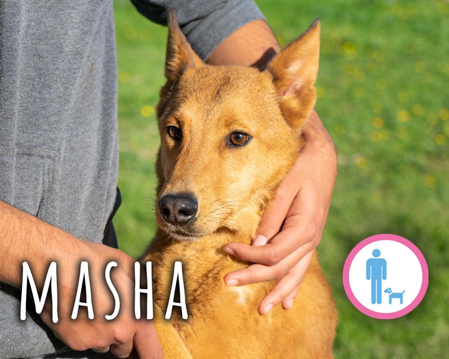 Profilo_Masha