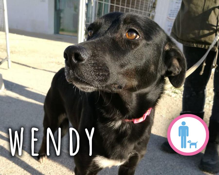 Wendy_profilo
