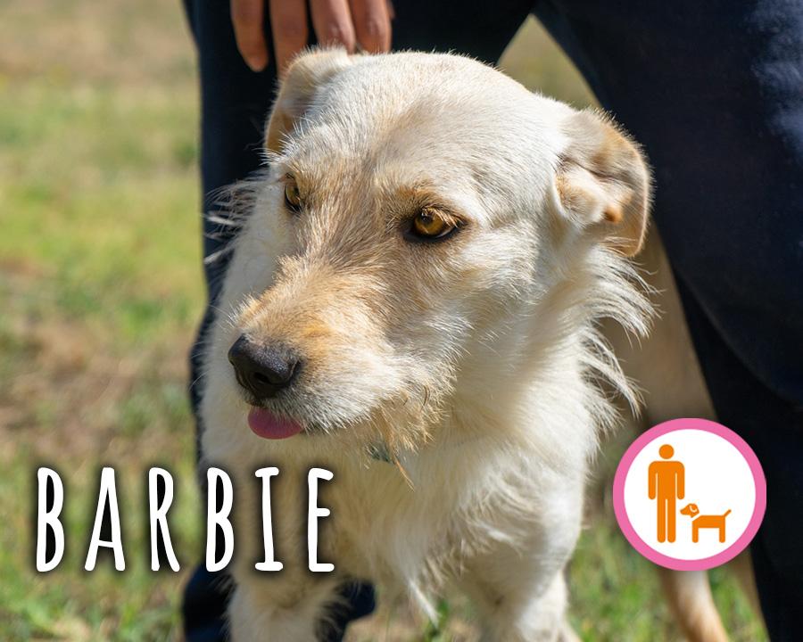 Barbie_profilo_2