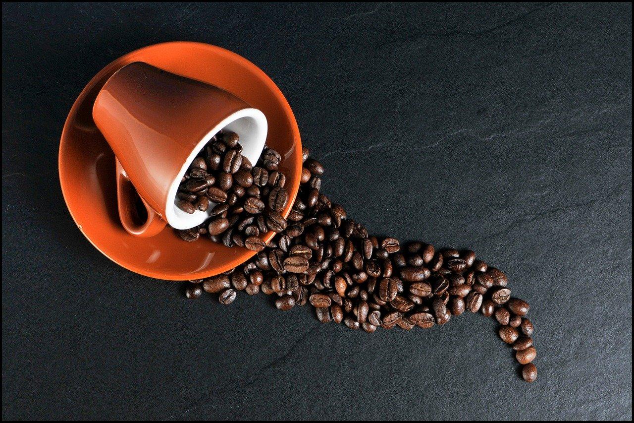 Caffè_CibiPericolosi_Cani