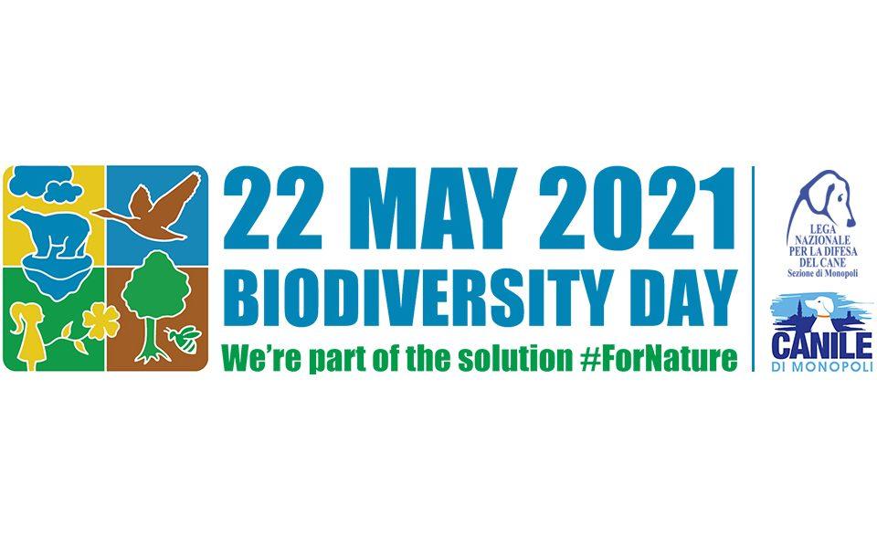 Profilo_articolo_biodiversità2