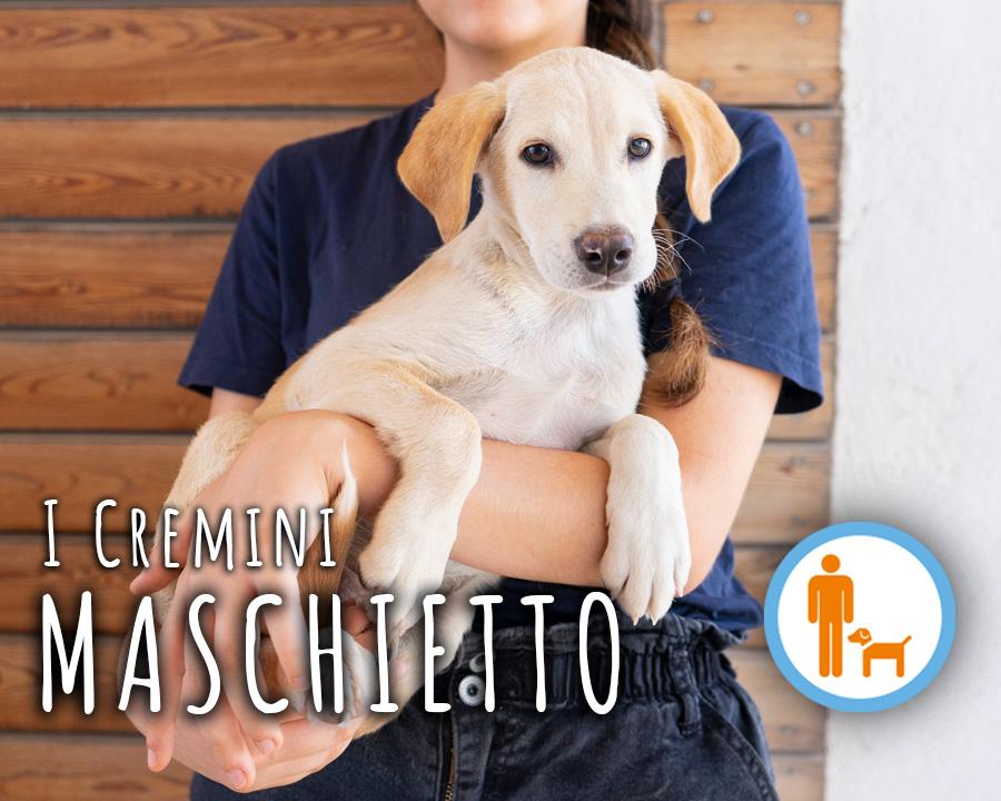 profilo_MASCHIETTO_2